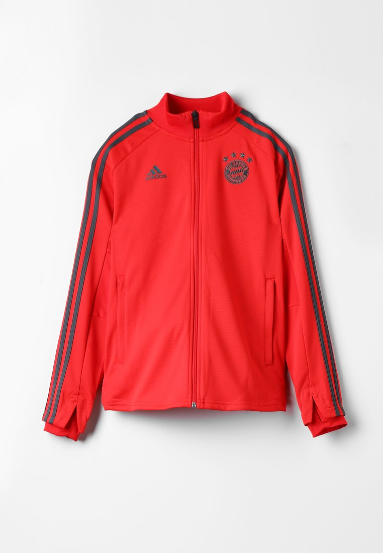adidas Performance - FC BAYERN TRAINING - Fanartikel - red/utility ivy