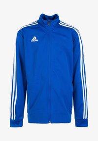 bold blue/dark blue/white
