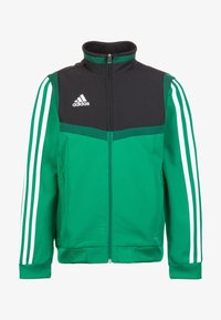 bold green/white