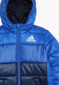 adidas Performance - PADDED - Veste d'hiver - blue/collegiate navy/white - 3