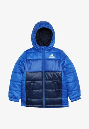 PADDED - Chaqueta de invierno - blue/collegiate navy/white