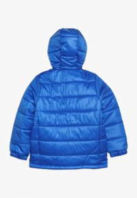 adidas Performance - PADDED - Veste d'hiver - blue/collegiate navy/white - 1