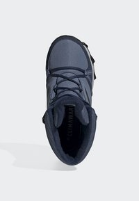 adidas Performance - TERREX SNOW CP CW SHOES - Scarpe da snowboard - blue - 1