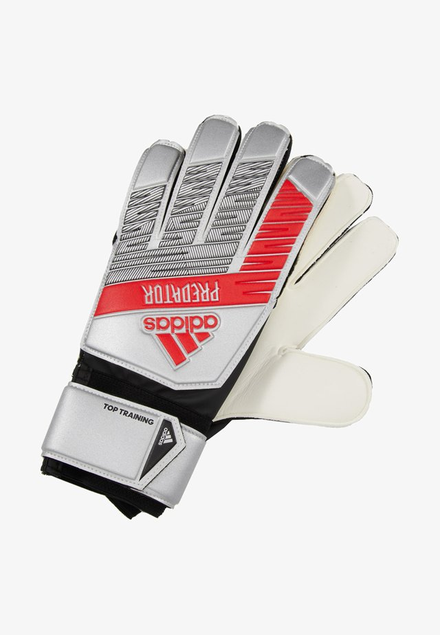 PRED - Goalkeeping gloves - silver metallic/black
