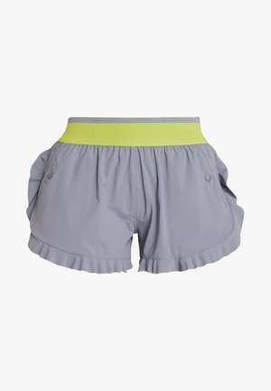 HIGH INTENSITY SPORT CLIMALITE SHORTS - Pantaloncini sportivi - grey