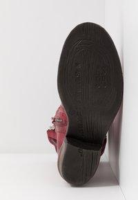 A.S.98 - Kovbojské/motorkářské boty - cardinal/testa di moro - 6