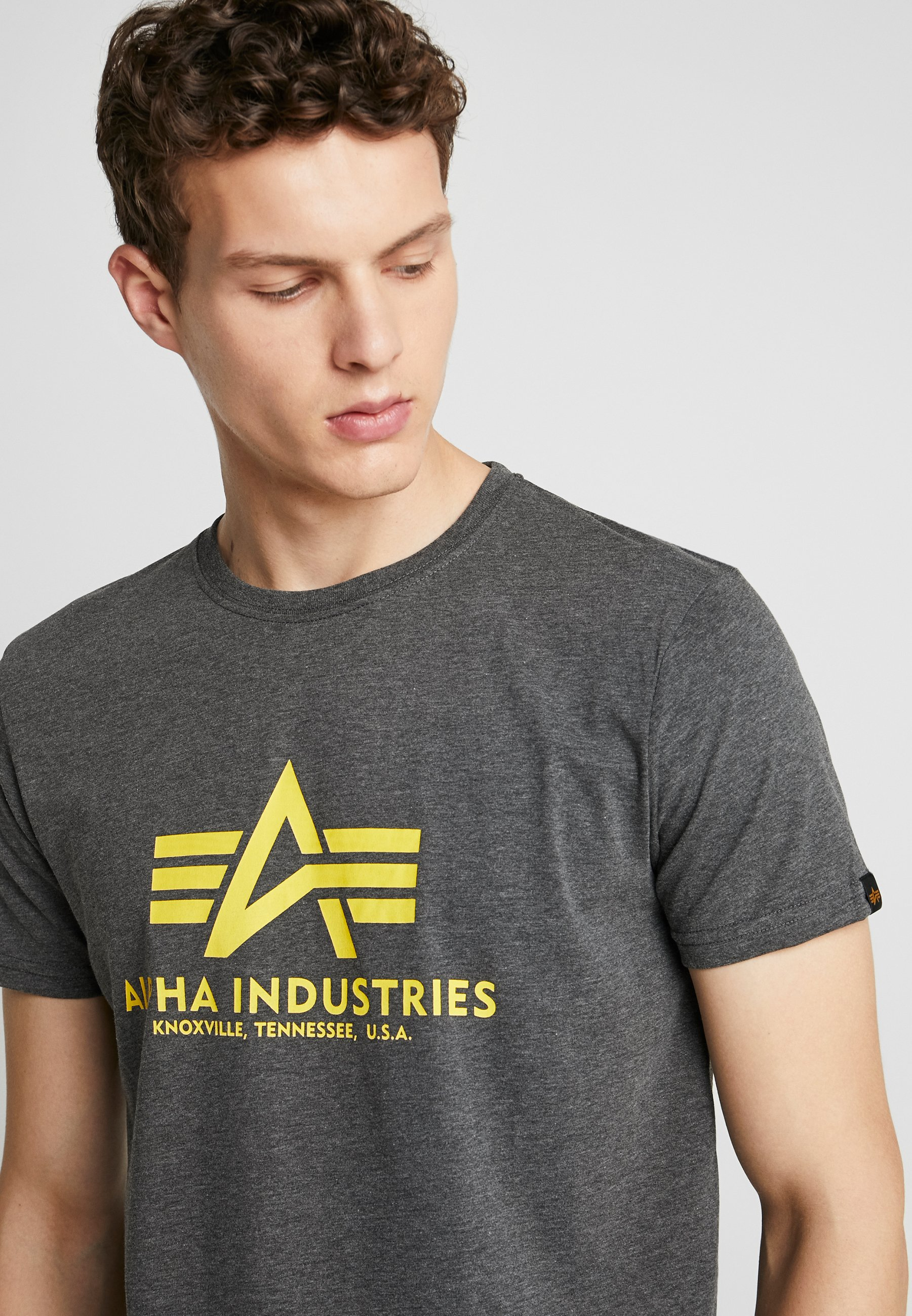 Alpha Industries Print T-shirt - Charcoal Heather