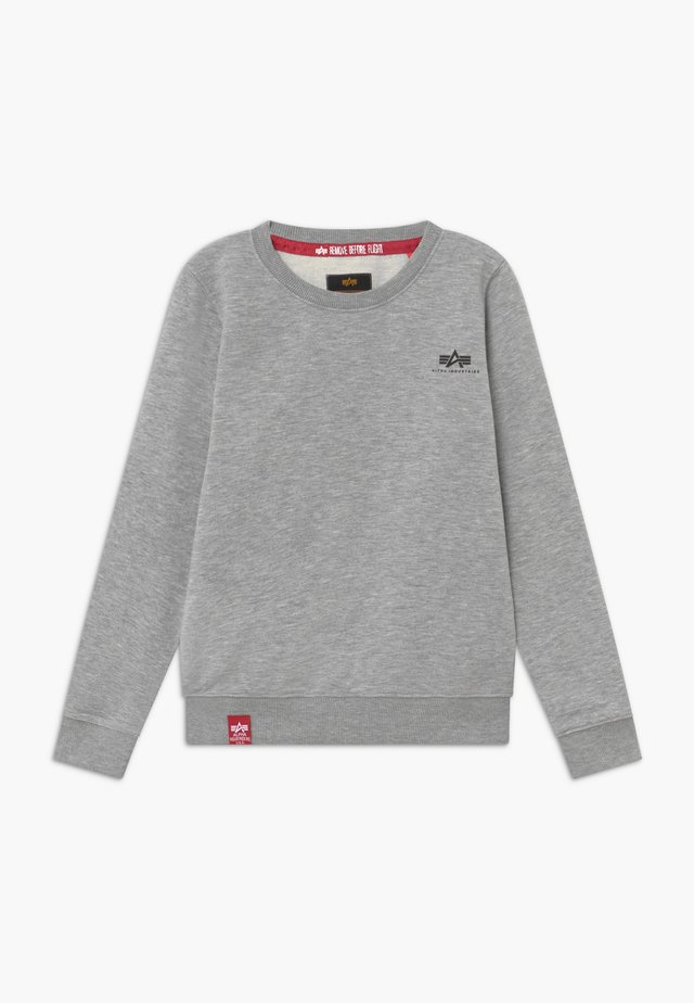 BASIC SMALL LOGO KIDS TEENS - Sweatshirts - grey heather