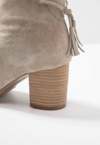 Anna Field - LEATHER CLASSIC ANKLE BOOTS - Classic ankle boots - taupe - 2