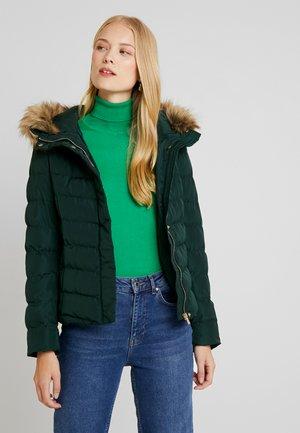 Winter jacket - scarab