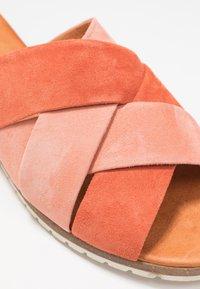 Apple of Eden - BERTA - Mules - salmon/orange - 2