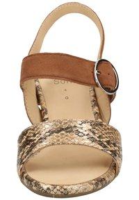 ara - Sandaler - taupe/camel 09 - 5