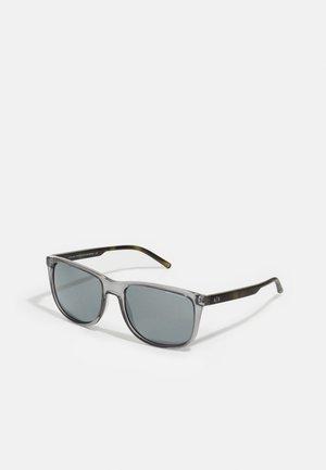 Sunglasses - transparent magnet grey