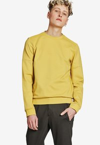 ARYS - Sweatshirt - mustard yellow - 0