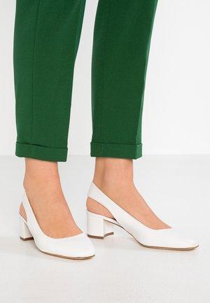 Zapatos de novia - avorio