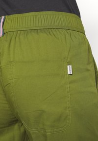 Burton - JOY PANT - Bukse - pesto green - 4
