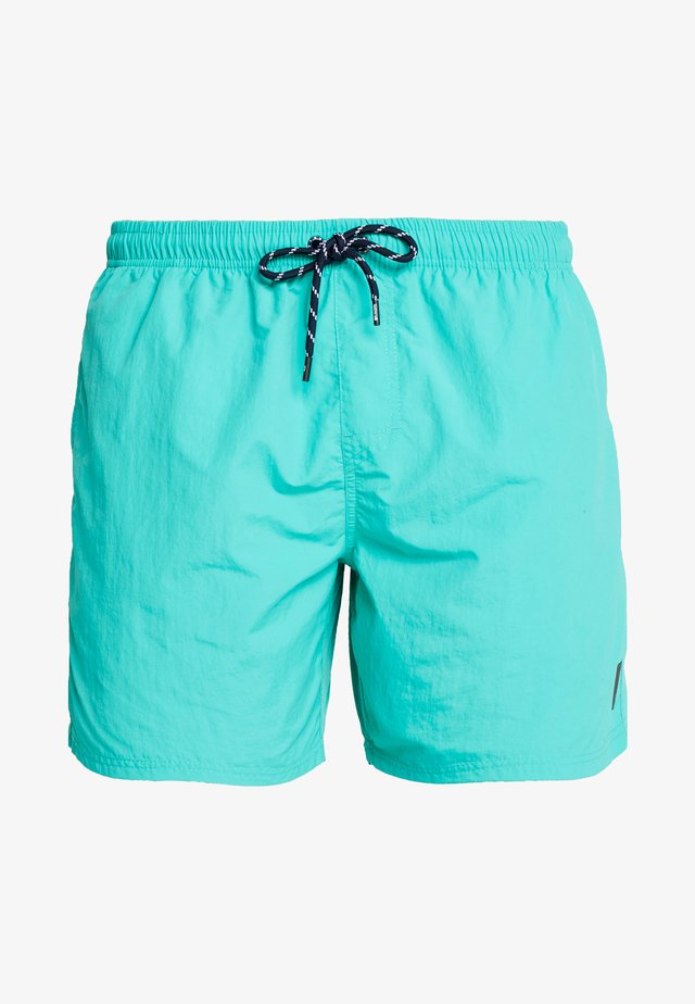 HESTER MENS SHORTS - Plavky - carribean green