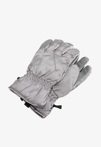 Barts - BASIC SKIGLOVES - Gants - silver - 0