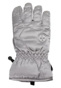Barts - BASIC SKIGLOVES - Gants - silver - 2