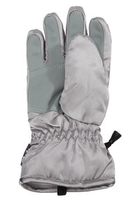 Barts - BASIC SKIGLOVES - Gants - silver - 1