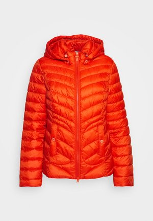 FULMAR QUILT - Light jacket - sunstone