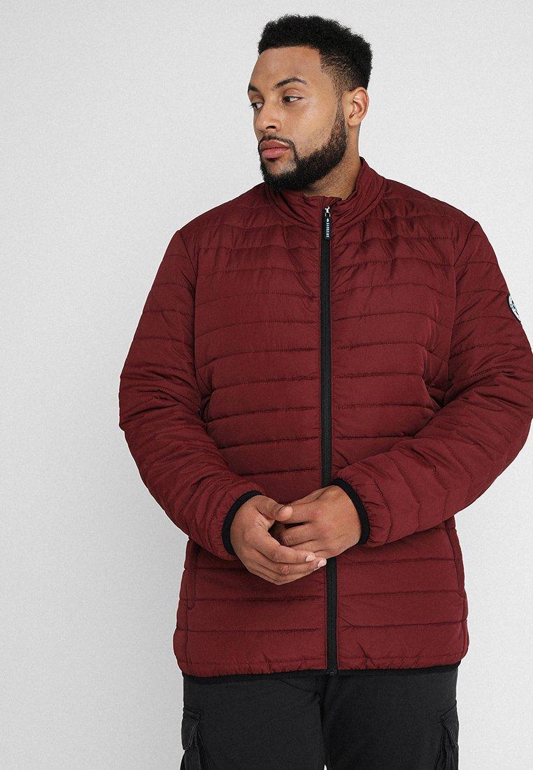BAD RHINO - PADDED PANEL JACKET PLUS - Light jacket - burgundy