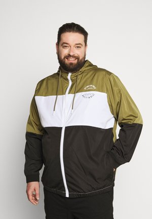 OUTERWEAR - Summer jacket - martini olive