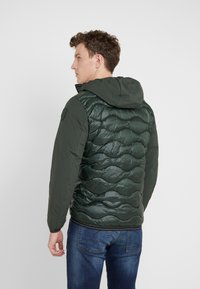 Blauer - Winter jacket - green - 2