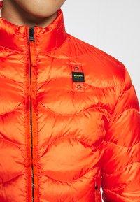Blauer - Dunjacka - arancio brillante - 6