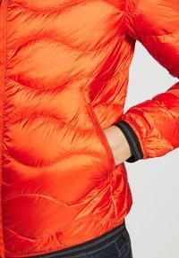Blauer - Dunjacka - arancio brillante - 4