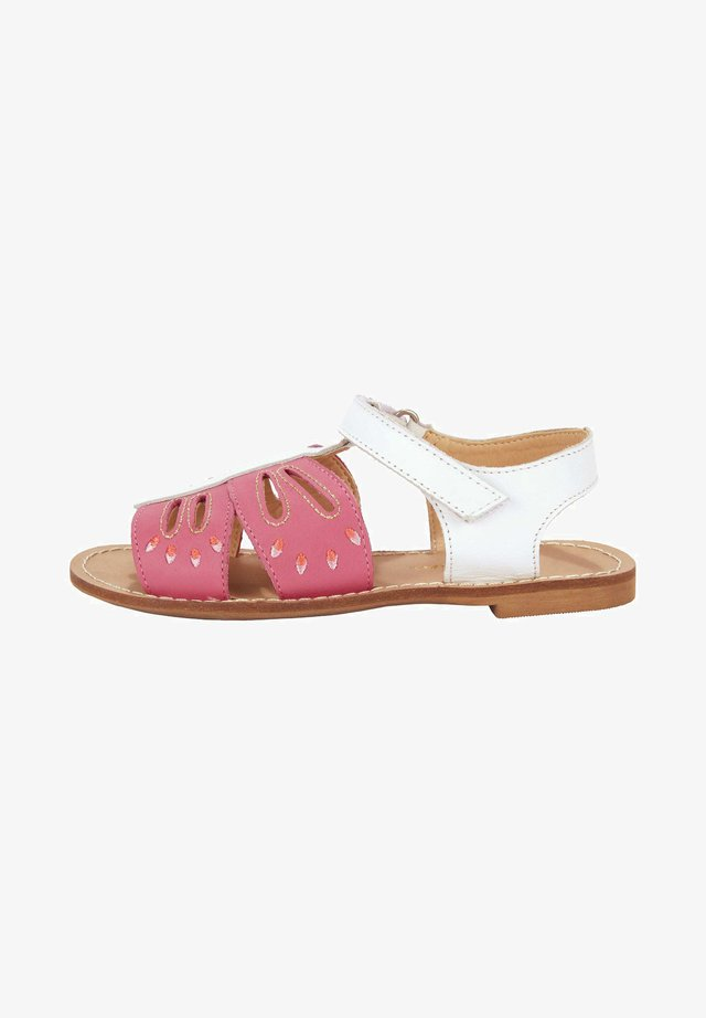 Sandals - bright camelia/pink butterfly