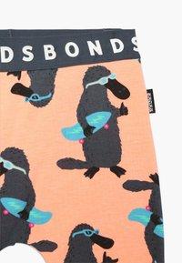 Bonds - BABY - Leggings - orange - 3