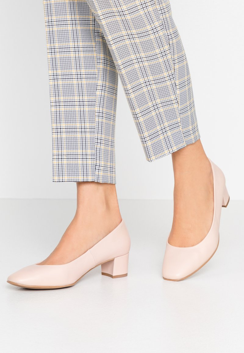 Brenda Zaro Wide Fit - WIDE FIT AINARA - Classic heels - pale