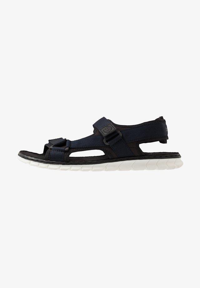 CORFU - Sandales de randonnée - black/dark blue