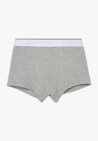 Calvin Klein Underwear - TRUNKS 2 PACK - Pants - grey - 2