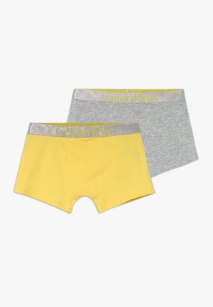TRUNKS 2 PACK - Panties - grey
