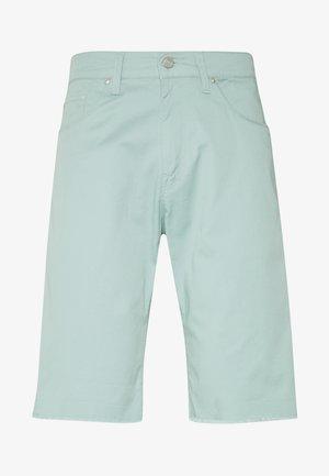SWELL WICHITA - Shorts - light green