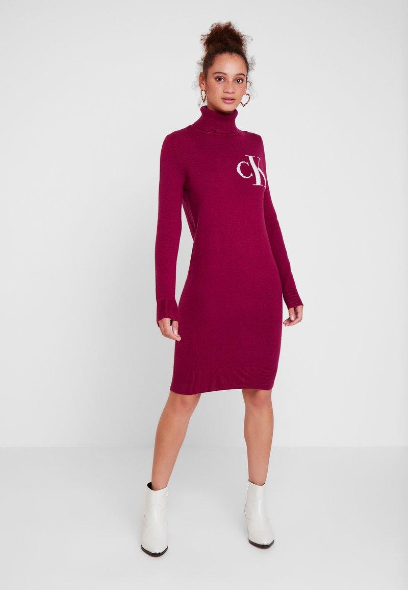 Calvin Klein Jeans - MONOGRAM SWEATER DRESS - Denní šaty - beet red