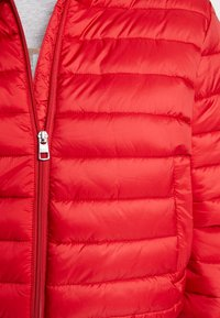 Calvin Klein Jeans - PADDED PUFFER WITH LOGO BINDING - Light jacket - barbados cherry - 5
