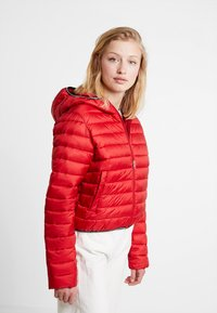 Calvin Klein Jeans - PADDED PUFFER WITH LOGO BINDING - Light jacket - barbados cherry - 0