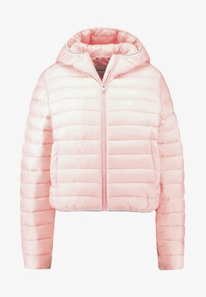 PADDED PUFFER WITH LOGO BINDING - Jas - blossom