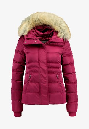 FITTED PUFFER - Chaqueta de plumas - beet red