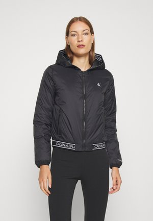 LOGO HOODED PADDED JACKET - Välikausitakki - black