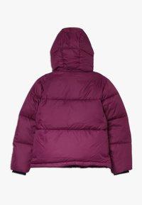 Calvin Klein Jeans - ESSENTIAL PUFFER JACKET - Winter jacket - purple - 1