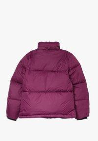 Calvin Klein Jeans - ESSENTIAL PUFFER JACKET - Winter jacket - purple - 2