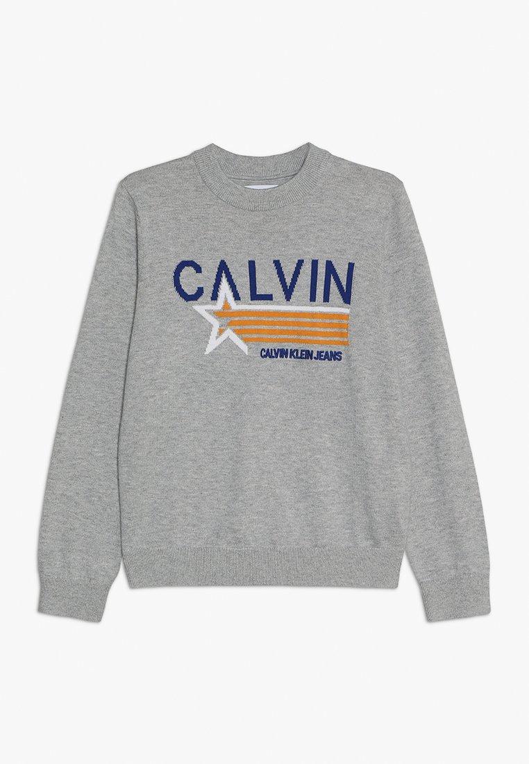 Calvin Klein Jeans - GRAPHIC  - Svetr - grey