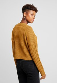 Cotton On - LEXI RAGLAN - Pullover - apple cinnamon - 2