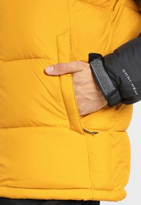 Columbia - PIKE  - Winter jacket - golden yellow - 4