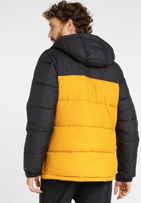 Columbia - PIKE  - Winter jacket - golden yellow