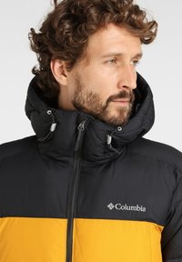 Columbia - PIKE  - Winter jacket - golden yellow - 3